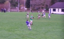 Purcell Cup Final 2011, Templenoe V Tuosist_5