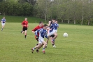 2nd Round County Novice, Fossa V Templenoe_2
