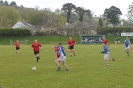 2nd Round County Novice, Fossa V Templenoe_4
