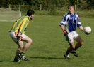 County Novice Semi Final 2013, Templenoe V Lispole_2
