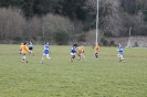 Div3 east Kerry League, Templenoe / Tuosist V Beaufort_1