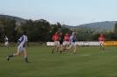 Purcell Cup 2013, Kilgarvan V Templenoe_3