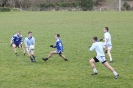 South Kerry League, Templenoe V Renard_2