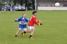County U12 League Templenoe V St Pats Blennerville 2014_3