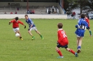 County U12 League Templenoe V St Pats Blennerville 2014_4