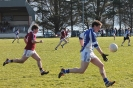 South Kerry League, Templenoe V Dromid_3