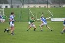 AIB All Ireland Junior Semi Final, Templenoe V Curraha_8