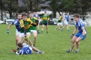 Challenge Match, Templenoe V Kerry U21's Jan 2016_6