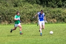 Div1 County SFL, Legion V Templenoe July 2016_3