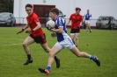 Div1 County SFL, Glenbeigh-Glencar V Templenoe 03 June 2010_5